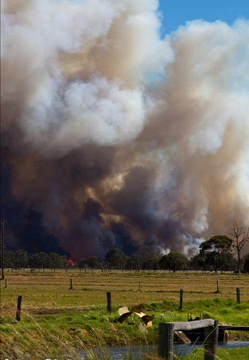 How to prepare your property and survive a bushfire